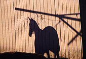 HOR 01 MR0001 01