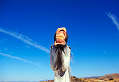 HOR 01 RK0106 26