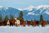 HOR 01 RK0591 03