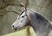 HOR 01 SS0139 01