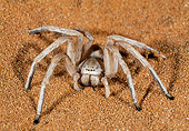 INS 04 MH0001 01