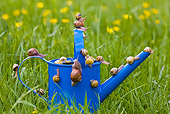INS 15 KH0013 01