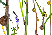 INS 15 KH0023 01