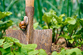 INS 15 KH0027 01