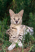 JGC 01 TK0001 01