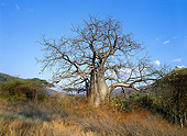 LAN 01 JE0003 01