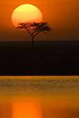 LAN 01 MC0003 01