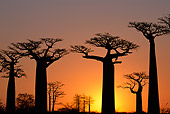 LAN 01 MH0064 01