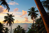 LAN 01 MH0100 01