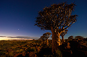 LAN 01 MH0118 01