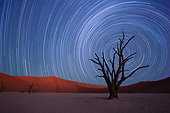 LAN 01 MH0126 01