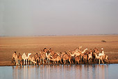 LAN 01 MR0002 01