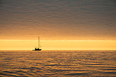 LAN 02 SK0003 01