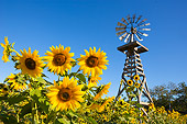 LAN 03 RK0049 01
