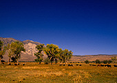 LAN 03 RK0016 02