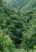 LAN 04 LS0001 01