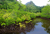 LAN 04 MH0033 01