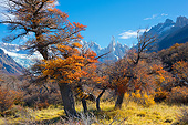 LAN 04 MH0040 01