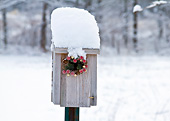 LAN 07 DA0004 01