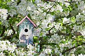 LAN 07 DA0007 01