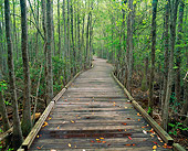 LAN 07 GR0006 01