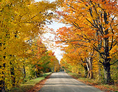 LAN 07 GR0030 01