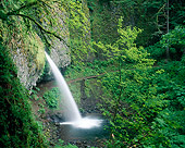 LAN 07 GR0087 01