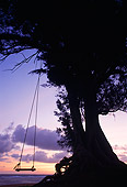 LAN 07 MR0010 01