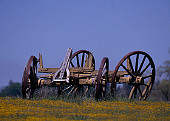 LAN 07 RK0042 04
