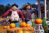 LAN 07 RK0142 16