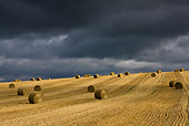 LAN 08 KH0037 01