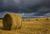 LAN 08 KH0039 01