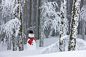 LAN 08 KH0044 01