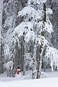 LAN 08 KH0045 01