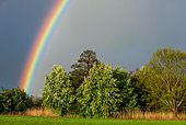 LAN 08 KH0086 01