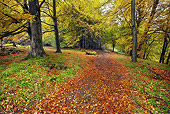 LAN 08 MH0002 01