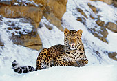 LEP 10 RK0014 05