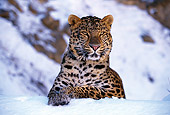 LEP 10 RK0029 02