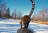 LEP 10 RK0089 01