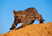 LEP 20 RK0127 09