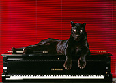 LEP 30 RK0115 03
