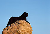 LEP 30 RK0223 05