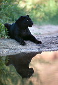 LEP 30 RK0252 18