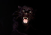 LEP 30 RK0015 04