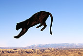 LEP 30 RK0029 02