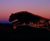 LEP 30 RK0035 04