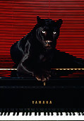 LEP 30 RK0115 35
