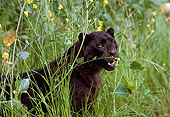 LEP 30 RK0121 01