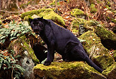 LEP 30 RK0189 02