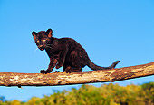 LEP 30 RK0210 22